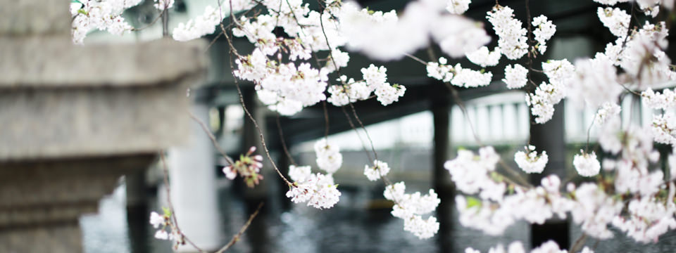 仏教サロン京都
